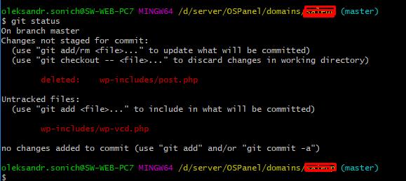Malware wp-vcd, какие файлы могут быть повреждены внутри WordPress и вашей темы.